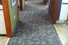 dr-jennifer-reed-jj-invision-carpet600x800